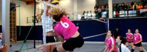 5 Punkte für die Pink Ladies in Volders - Volleyball Tirol